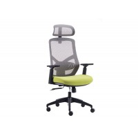 Toronto Ergonomic Office Chair